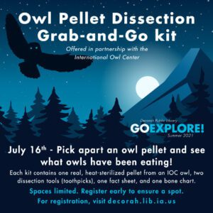 Owl Pellet Dissection Grab-and-Go Kits 07/16/2021