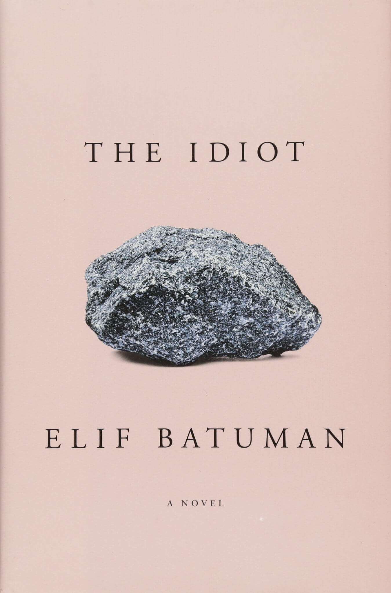 The Idiot book cover image