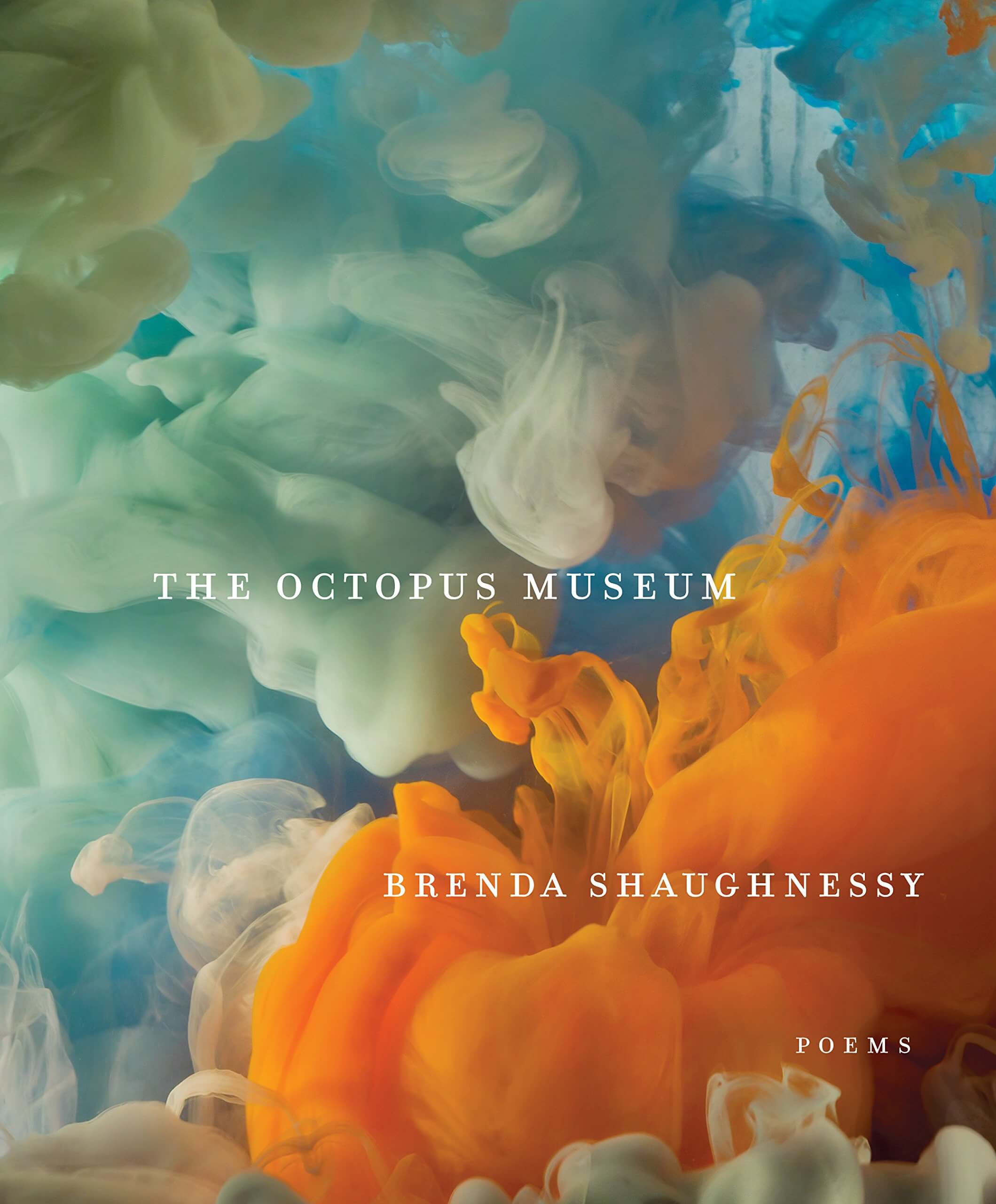 The Octopus Museum book cover image