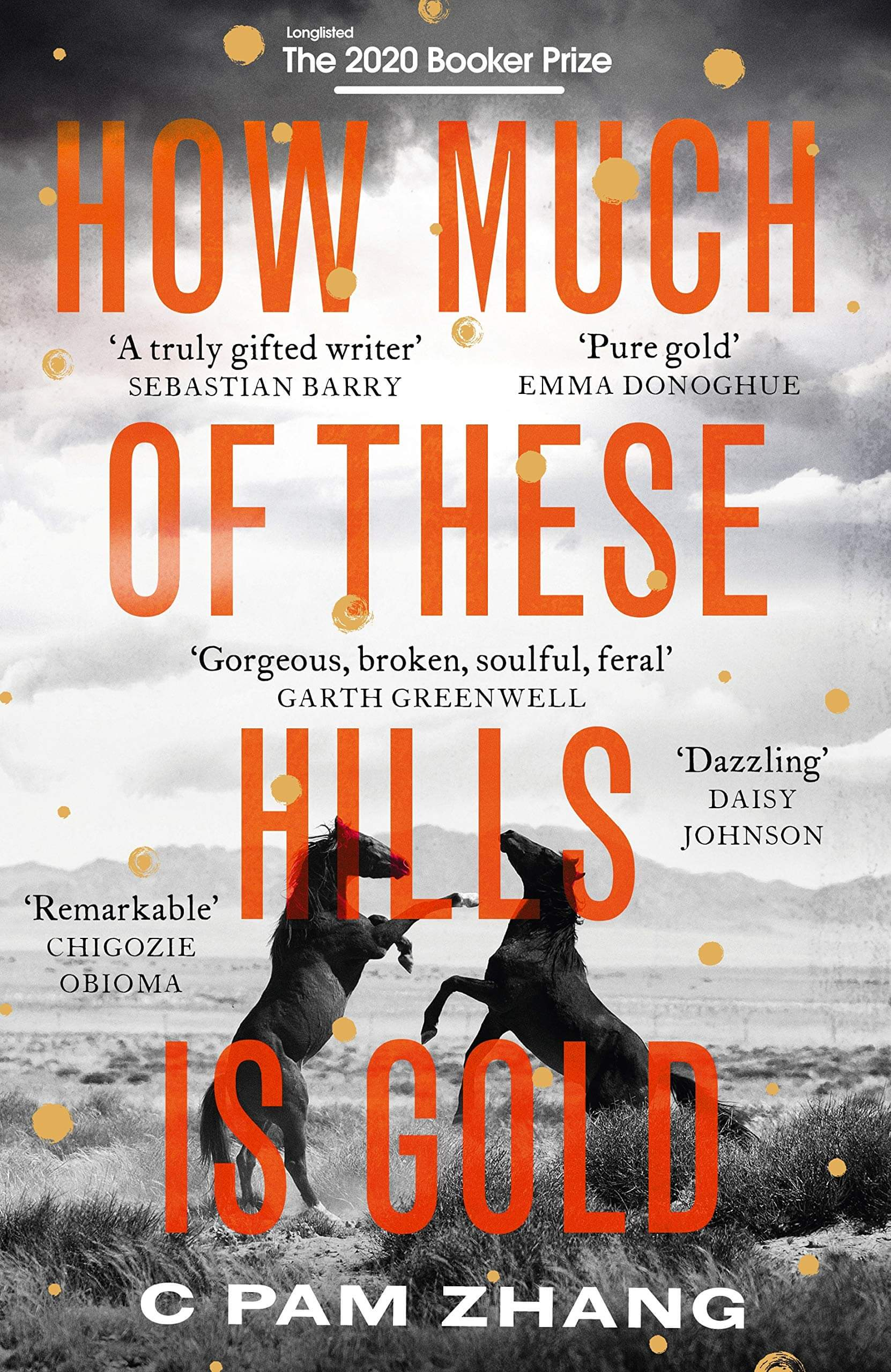 How Much Of These Hills Is Gold book cover image