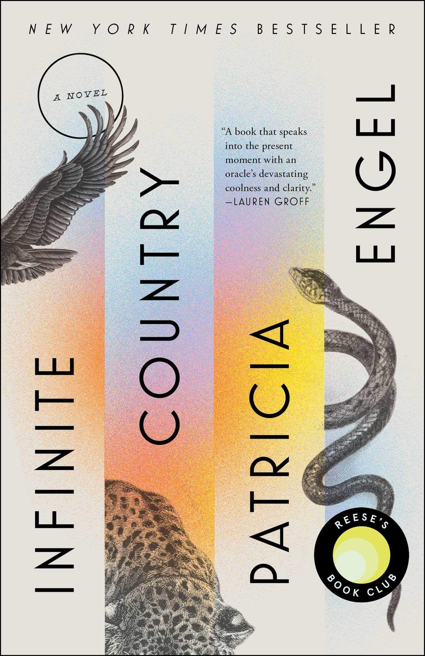 Infinite Country book cover image